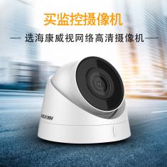 海康威视DS-IPC-T12-I 200万H264网络监控摄像头半球 高清夜视